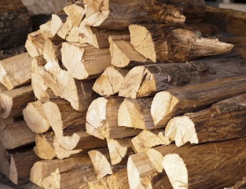 Why Hardwoods Make the Best Firewood