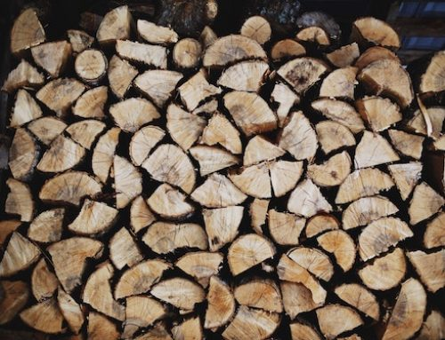 Why You Should Always Use Seasoned Firewood